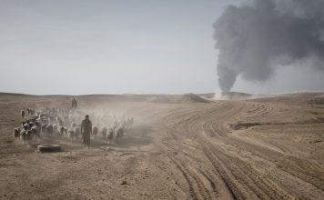 Irak environnement conflit