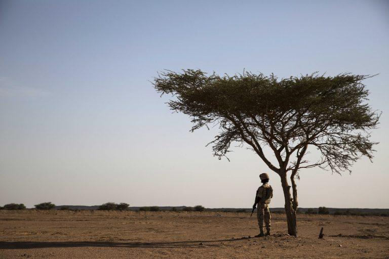 Dépasser les frontières ? Limites de l'approche stato-centrée de la MINUSMA face à la violence transnationale dans le Sahel